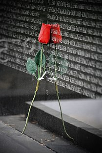Reflective rose - Vietnam Veterans Memorial.jpg