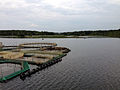 Reservoir on river Suma 3.jpg