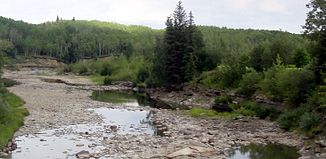 Redwillow River in Grande Prairie County, Alberta