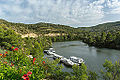 Riba-roja d'Ebre, Tarragona, Espagne - Image Photo Picture Spain River Water Boat nature (14206598687).jpg