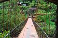 Rickety suspension bridge.jpg