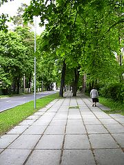 Left-bank Riga is distinguished by its green streets and large parks.