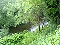 River Goyt - geograph.org.uk - 465348.jpg