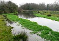 River Piddle - geograph.org.uk - 1098181.jpg