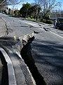 River Road, Christchurch 44.jpg