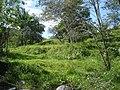 Rivera del Rio Ambeima Chaparral Tolima Colombia - panoramio.jpg