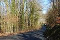 Road near Bwlch-y-ddwyallt - geograph.org.uk - 713547.jpg