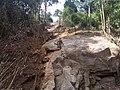 Roadside Landslip in Vazachal Forest, Anaimalai hills Roadside Landslip in Anaimalai hills IMG 20180908 153504608.jpg
