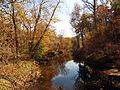 Rock Creek at Riley Spring Bridge - Flickr - treegrow (2).jpg