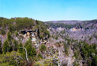 Fall Creek Falls State Park - View of Cane Creek Gorge from the Rocky Point Overlook