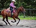 Rodeo in Panama 32.jpg