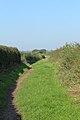 Roman Road, Little Storeton 2.jpg