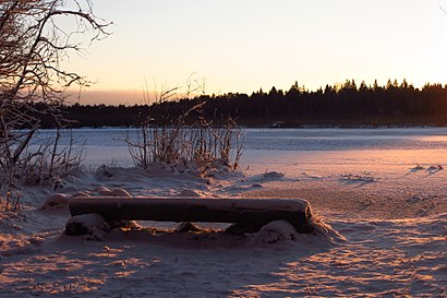 How to get to Ruila Järv with public transit - About the place