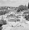 Ruines van een synagoge met op de achtergrond tegen de heuvel huizen van het nie, Bestanddeelnr 255-2602.jpg