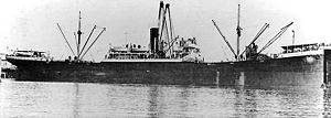 Seisho Maru had design and measurements similar to West Carnifax, a sister ship from the same shipyard seen here.