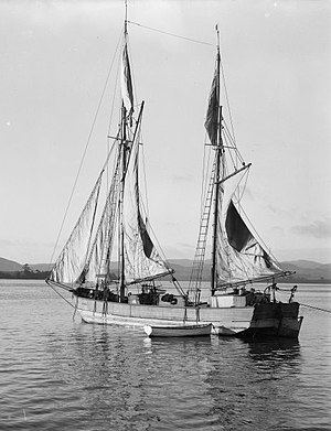 Scow - A New Zealand scow around the 1900s