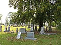 Sallis Cemetery (519069001).jpg