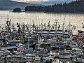 Salmon Seine Fleet 37.jpg