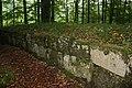 Sarmizegetusa Regia mur.jpg