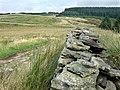 Sarn Helen Roman Road, Hirfynydd - geograph.org.uk - 975700.jpg