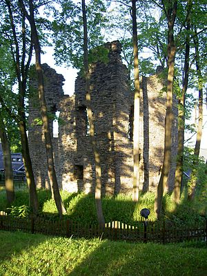 Breitenbrunn, Saxony - Ruins of the former Electoral hunting lodge