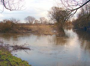 Schunter - Confluence of the Schunter (left) and Oker river near Groß Schwülper.
