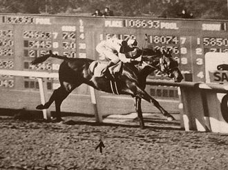 Seabiscuit - Seabiscuit winning the Santa Anita Handicap in 1940