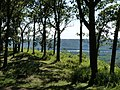 Sentinel Ridge at Wyalusing Park.jpg