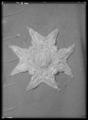 Serafimerordens kraschan som tillhört Fredrik I, 1748-1751 - Livrustkammaren - 53222.tif