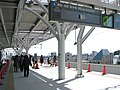 Shakujii-koen Station-2010.1.30 4.jpg