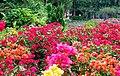Shilin Presidential Residence Park 士林官邸公園 - panoramio (1).jpg