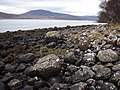 Shore of Little Loch Broom - geograph.org.uk - 1183161.jpg