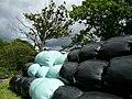 Silage bales near Lower Coates Farm - geograph.org.uk - 938921.jpg