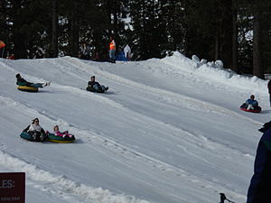 Snow tubers going down a hill.
