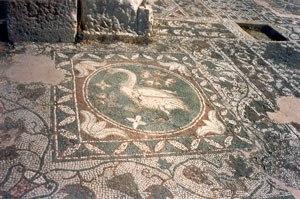 Soli, Cyprus - The swan mosaic at Soli