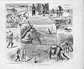 Some Indian Sporting Notes - The Graphic 1883.jpg