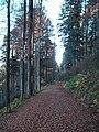 Sommerlicher Herbst Herrenstuhl - panoramio (17).jpg