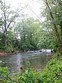 South River in Virginia (8002922280).jpg