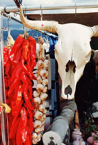 Symbols of the Southwest: a string of dried chile pepper pods (a ristra) and a bleached white cow's skull hang in a market near Santa Fe Southwestern Chillis and Skull.jpg