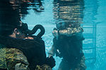 Special Forces Soldiers conduct scuba recertification 150120-A-KJ310-010.jpg
