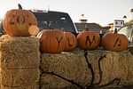 """Spooky Sweets and Halloween Treats were Offered at MCAS Yuma Annual """"Trunk or Treat"""" Event 161020-M-BY246-006.jpg"""