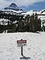 Spring at Logan Pass (4479446728).jpg