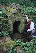 St Keyne's Holy Well - geograph.org.uk - 93820.jpg