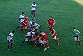 Stadio Monigo , Treviso vs Scarlets - panoramio (2).jpg