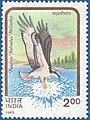 Stamp of India - 1992 - Colnect 164334 - Osprey Pandion haliaëtus haliaëtus.jpeg