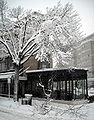 Starbucks in Dupont Circle - Blizzard of 2010.JPG