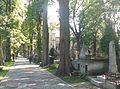 Stary Cmentarz Tarnów.jpg
