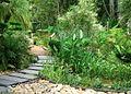 Stellenbosch University Botanical Garden - garden.jpg