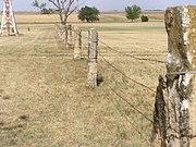 Fencepost Limestone Wikipedia
