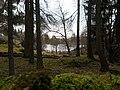 Stonehills Tarn by David Brown.jpg